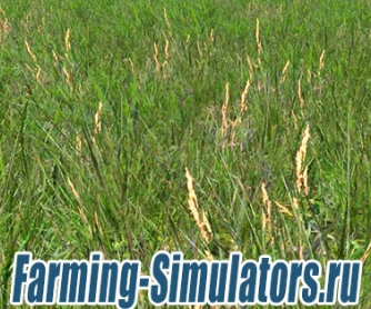 Текстура травы «Grass Texture» v1.0 для Farming Simulator 2015 - скриншот